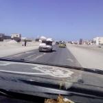 black-wolves-in-capitala-mauritaniei