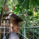 daintree-wilderness-lodge-australia-4