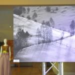 nicu-cosnicerustyle-nature-green-carpet-lifestyle-event