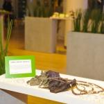 sonia-argint-ionescustyle-nature-green-carpet-lifestyle-event