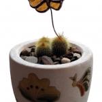 fluture-de-ghiveci-resize