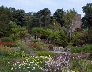 gradina botanica edinburgh