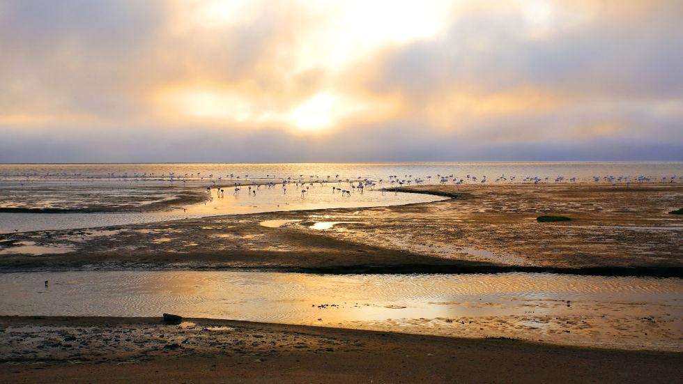 Plaja Walvis Bay Namibia