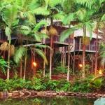 daintree-wilderness-lodge-australia-3